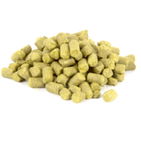 Northern_Brewer_hops31_400